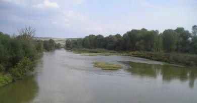 Пронајден женски леш во реката Вардар
